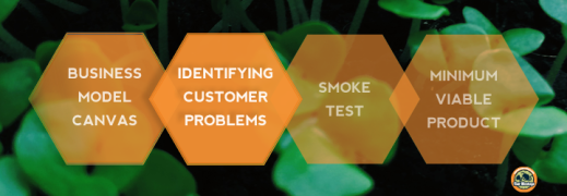 Minimum Viable Product-identifying customer problems