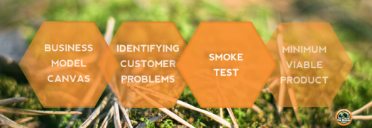 Minimum Viable Product-Smoke Test