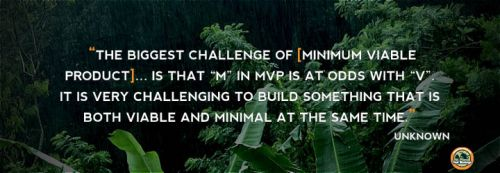 Minimum Viable Product strategies
